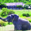 Bakubung Lodge - 20% off