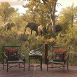 Hoyo Hoyo Tsonga Lodge - 20% OFF!