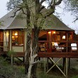 Hamiltons Tented Camp - 30% OFF!