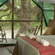 Kosi Forest Lodge - A FREE night!